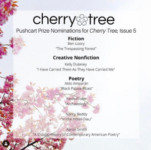 Cherry Tree Pushcart Nominations